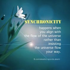 synchronicity4